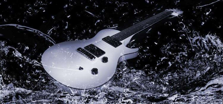 best room humidifer for guitars