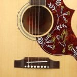Gibson Montana Hummingbird review
