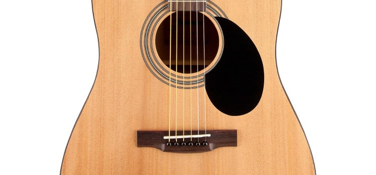 Jasmine S35 Dreadnought review