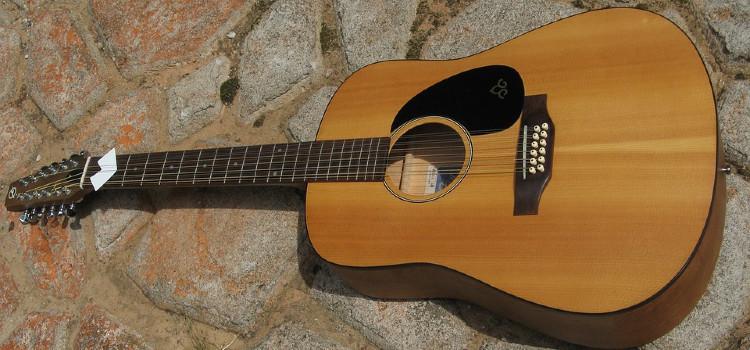 best 12 string guitar capo