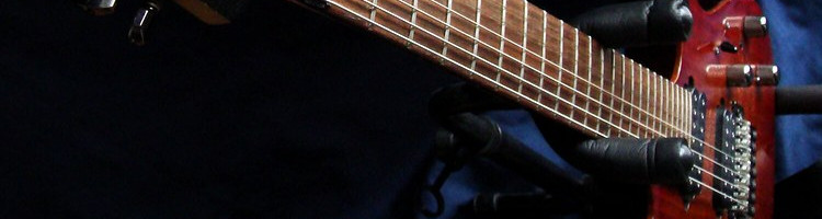buying a 7 string guitar