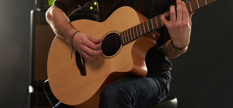 acoustic guitar batteries