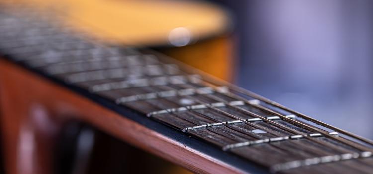 guitar neck lifespan